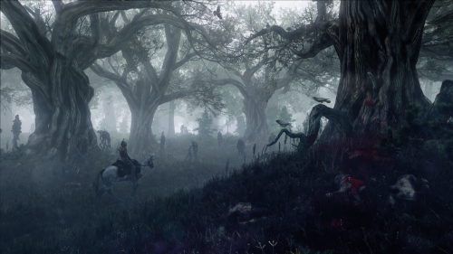 Witcher3_Forest
