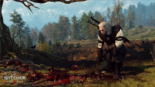 The_Witcher_3_Wild_Hunt_Dona€™t_feed_the_birds--it_only_encourages_them