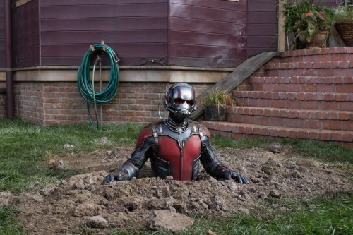 Ant3 500x333 Ant Man Review