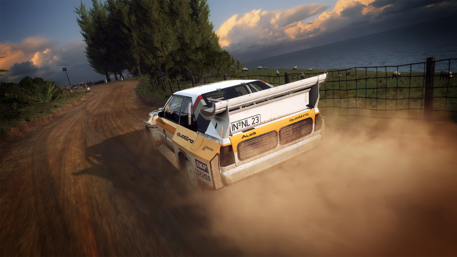 DiRT Rally 2.0 Force Feedback